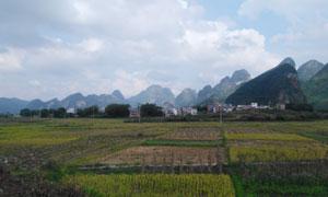 乡野村庄田园风光摄影图片