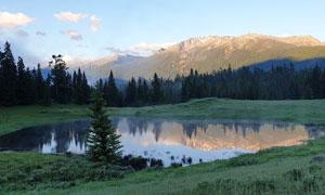 新疆喀纳斯山间水池高清摄影图片