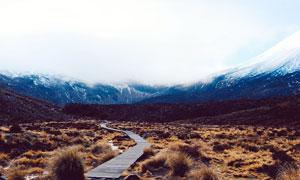雪山脚下美丽的小路摄影图片
