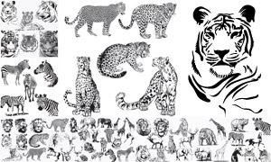 黑白素描老虎与大象等动物矢量素材