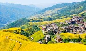 大山之中的梯田和村庄摄影图片