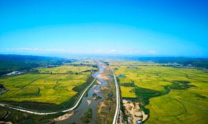 蓝天下的田园农田美景摄影图片