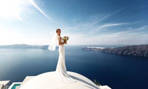 蓝天白云海边美女婚纱摄影高清图片