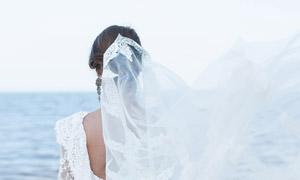 头纱飘起来的美女人物摄影高清图片