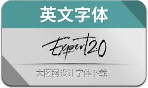 Expert2.0-Regular(英文字体)