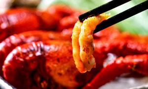 筷子夹起的小龙虾美食摄影图片