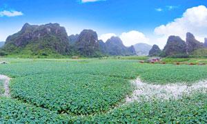 九龙峰林莲湖美景摄影图片