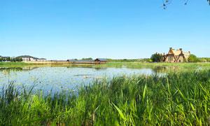 查干湖风景区美丽风光摄影图片