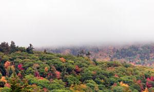 云雾缭绕的山顶风光摄影图片