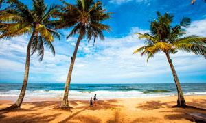 越南下龍灣海灘美景攝影圖片