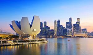 新加坡海边城市美丽夜景摄影图片