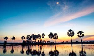 越南下龙湾景区黄昏美景摄影图片