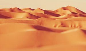 美丽的沙漠景观摄影图片