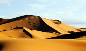 沙漠中的沙丘景观摄影图片