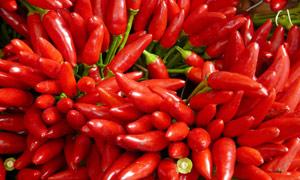 鲜红的小辣椒摄影图片