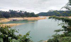 萬綠湖景區美麗風光攝影圖片