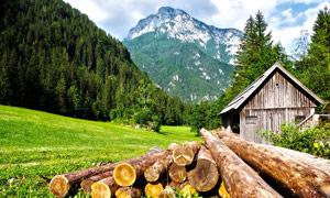 山中森林和木屋摄影图片