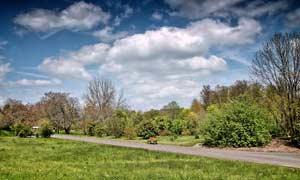 乌云下的公园景观摄影图片