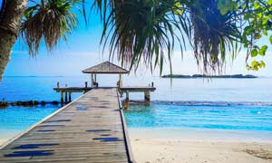 海边沙滩和木桥摄影图片