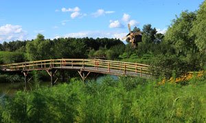 伏尔加庄园内的木桥摄影图片