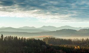 森林和連綿的山峰攝影圖片