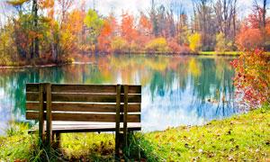 公園中的湖邊的靠椅攝影圖片