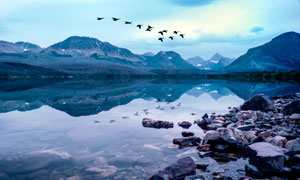 山間湖泊上飛過的鳥群攝影圖片