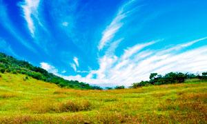 藍天白云下的綠色草地高清攝影圖片