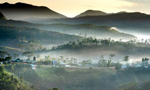 云霧繚繞的山坡美景攝影圖片