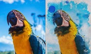 数码照片复古水彩画效果PSD模板