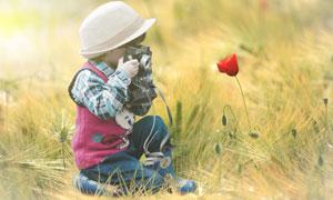 在拍摄红色鲜花的儿童人物高清图片