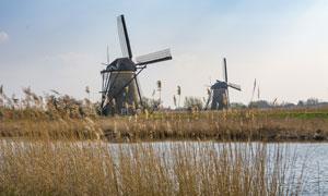 在河边的芦苇与风车屋摄影高清图片