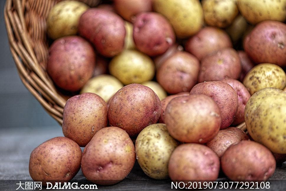 红皮与黄皮的土豆特写摄影高清图片