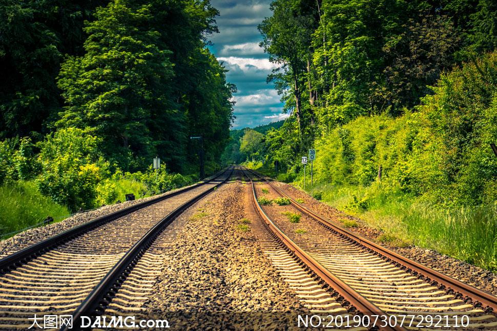 铁轨与茂密的树木风景摄影高清图片