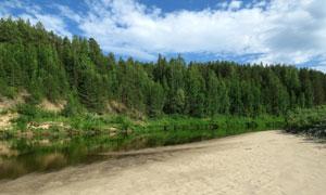 蓝天白云河边茂密树林摄影高清图片