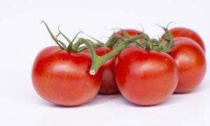 外表圆润光滑的西红柿摄影 澳门线上必赢赌场