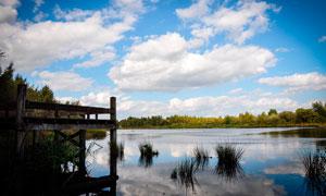 蓝天白云下的湖泊和木桥摄影图片
