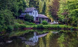 树林中的房屋和池塘摄影图片