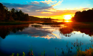 夕阳下的湖泊和水草摄影图片