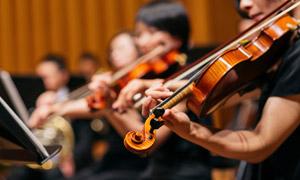 在拉小提琴的乐团人物摄影高清图片