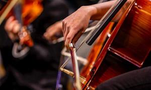 拉着大提琴的情景特写摄影高清图片