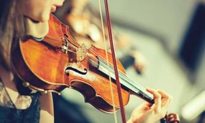 在拉小提琴的情景特写摄影高清图片