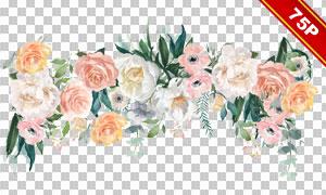 玫瑰绿叶与边框等免抠设计高清素材