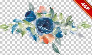 水彩花朵与叶子等元素免抠图片素材