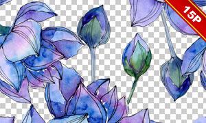 蓝色莲花元素背景主题水彩图片素材