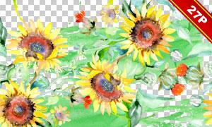 水彩风向日葵元素背景免抠图片素材