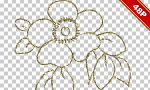 手绘素描效果花朵主题免抠图片素材