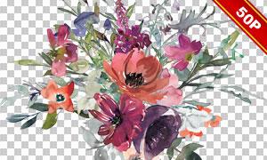 水彩创意鲜花叶子主题免抠图片素材