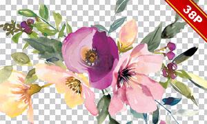 叶子与紫色花朵等水彩免抠图片素材