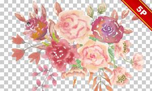 粉红色的花束主题水彩风格免抠素材